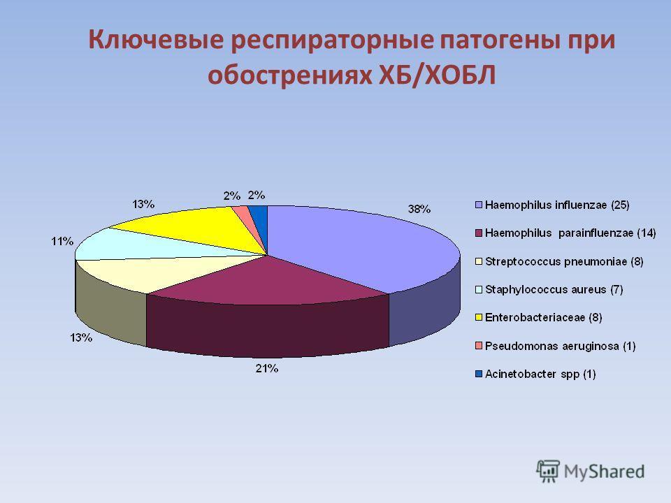 Ключевые респираторные патогены при обострениях ХБ/ХОБЛ