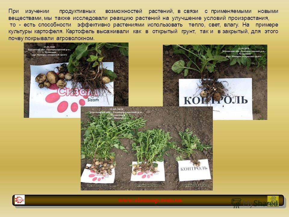 При изучении продуктивных возможностей растений, в связи с применяемыми новыми веществами, мы также исследовали реакцию растений на улучшение условий произрастания, то - есть способности эффективно растениями использовать тепло, свет, влагу. На приме