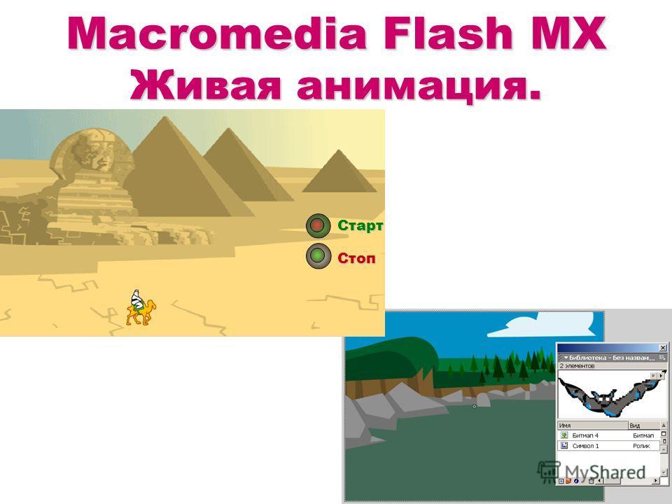 Macromedia Flash MX Живая анимация. Старт Стоп