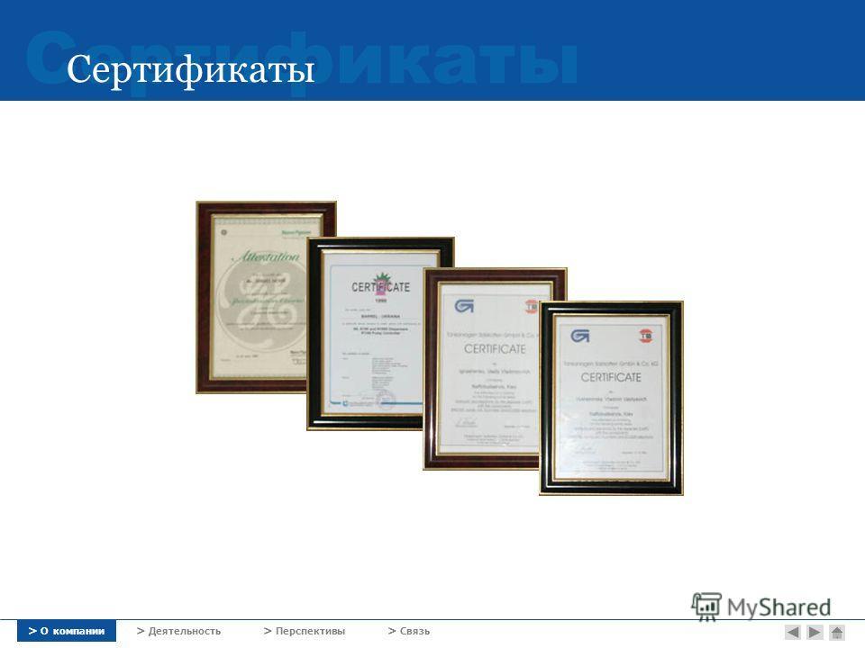 Сертификаты > О компании > Деятельность > Перспективы > Связь