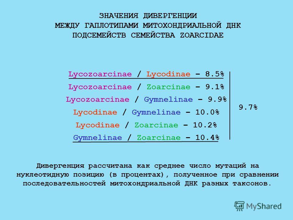 ЗНАЧЕНИЯ ДИВЕРГЕНЦИИ МЕЖДУ ГАПЛОТИПАМИ МИТОХОНДРИАЛЬНОЙ ДНК ПОДСЕМЕЙСТВ СЕМЕЙСТВА ZOARCIDAE Lycozoarcinae / Lycodinae – 8.5% Lycozoarcinae / Zoarcinae – 9.1% Lycozoarcinae / Gymnelinae – 9.9% Lycodinae / Gymnelinae – 10.0% Lycodinae / Zoarcinae – 10.