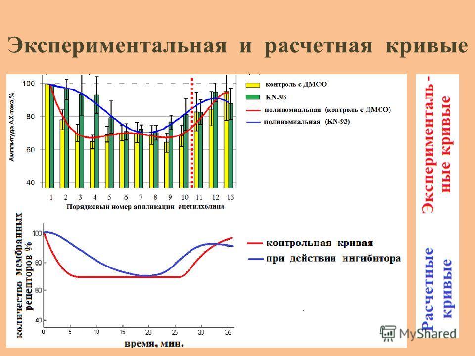 Экспериментальная и расчетная кривые