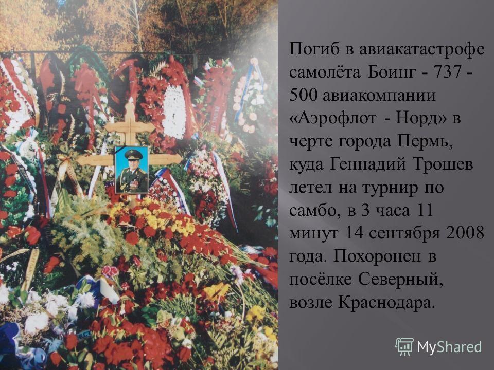 Погиб в авиакатастрофе самолёта Боинг - 737 - 500 авиакомпании « Аэрофлот - Норд » в черте города Пермь, куда Геннадий Трошев летел на турнир по самбо, в 3 часа 11 минут 14 сентября 2008 года. Похоронен в посёлке Северный, возле Краснодара.