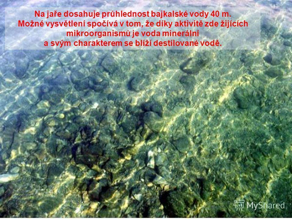 Bajkalská voda je stejně jedinečná a úžasná jako jezero samo. Je neobvykle průzračná, čistá a bohatá na kyslík. V minulosti byla považována za léčivou a byla používána jako lék proti nejrůznějším onemocněním.