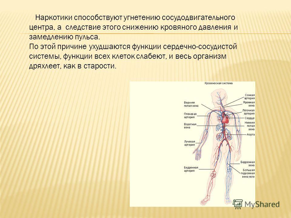 Наркотики способствуют угнетению сосудодвигательного центра, а следствие этого снижению кровяного давления и замедлению пульса. По этой причине ухудшаются функции сердечно-сосудистой системы, функции всех клеток слабеют, и весь организм дряхлеет, как