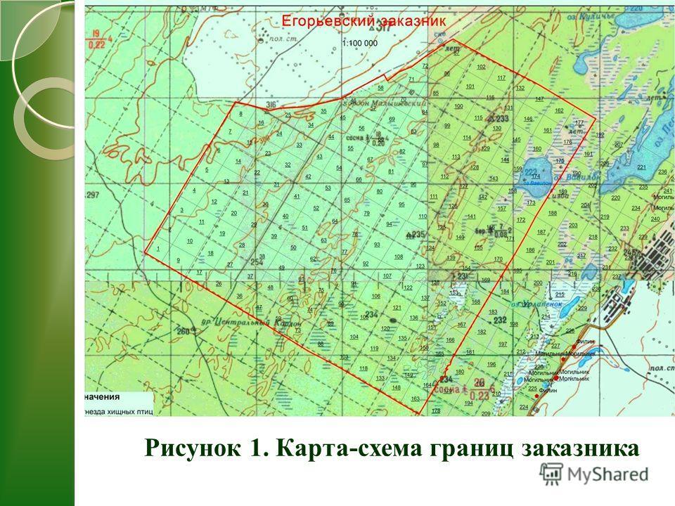 Карта-схема границ заказника