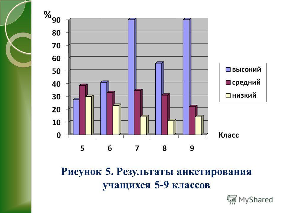 Рисунок 5. Результаты анкетирования учащихся 5-9 классов