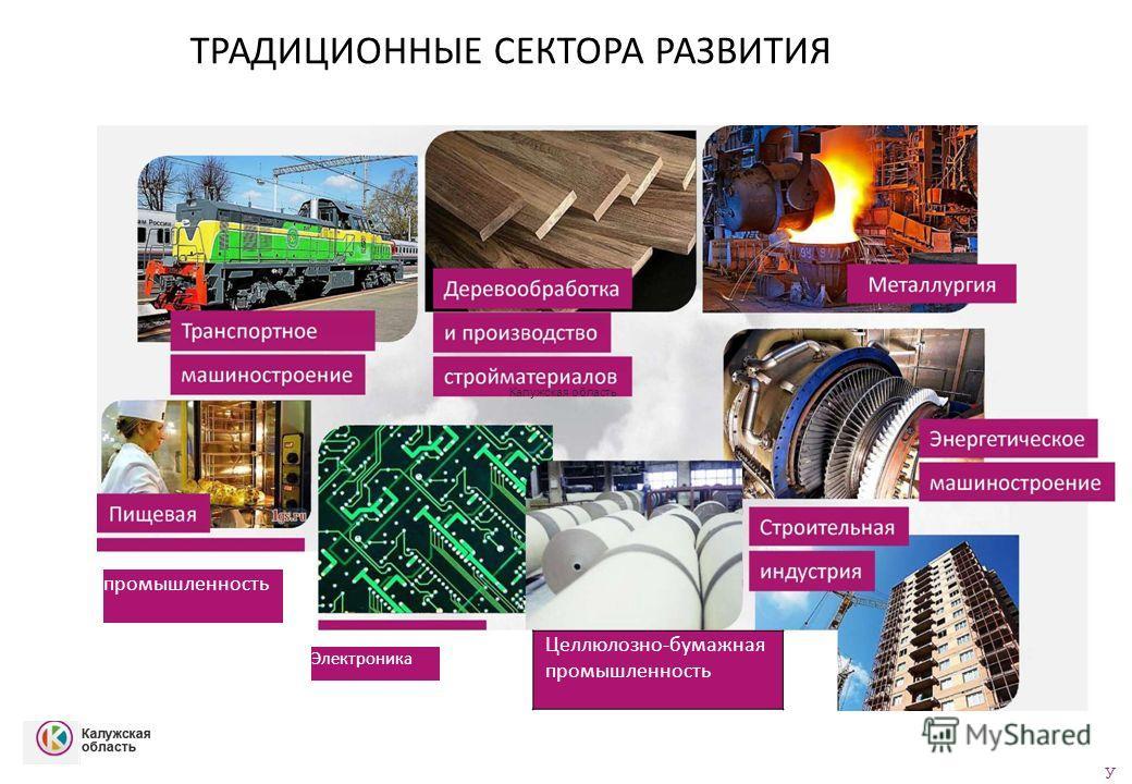 ТРАДИЦИОННЫЕ СЕКТОРА РАЗВИТИЯ промышленность Электроника Целлюлозно-бумажная промышленность У Калужская область