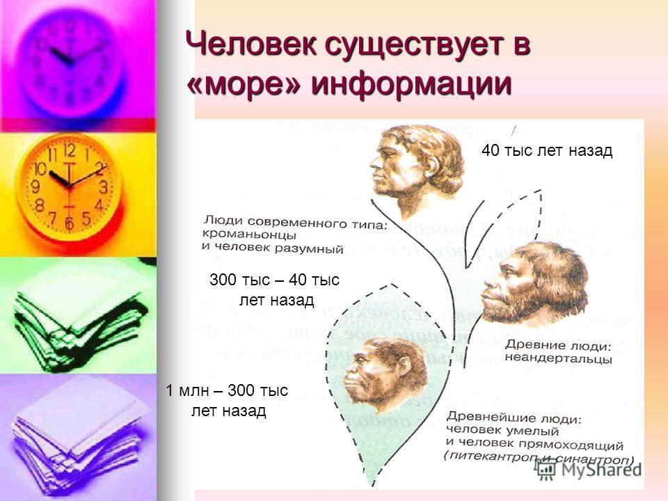 Человек существует в «море» информации 1 млн – 300 тыс лет назад 300 тыс – 40 тыс лет назад 40 тыс лет назад