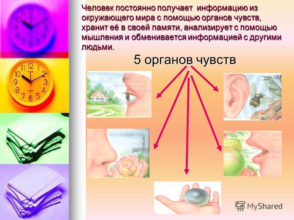 Человек постоянно получает информацию из окружающего мира с помощью органов чувств, хранит её в своей памяти, анализирует с помощью мышления и обменивается информацией с другими людьми. 5 органов чувств