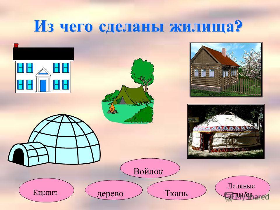 Из чего сделаны жилища ? Кирпич дерево Войлок Ткань Ледяные глыбы