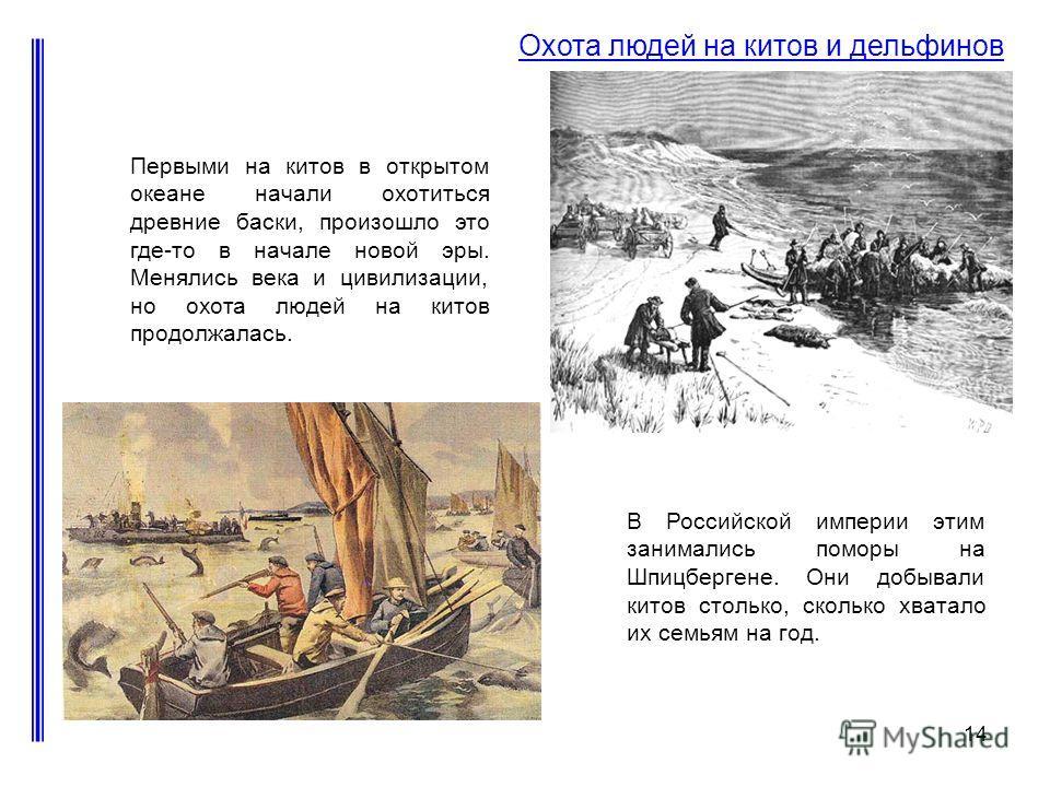 14 Охота людей на китов и дельфинов Первыми на китов в открытом океане начали охотиться древние баски, произошло это где-то в начале новой эры. Менялись века и цивилизации, но охота людей на китов продолжалась. В Российской империи этим занимались по