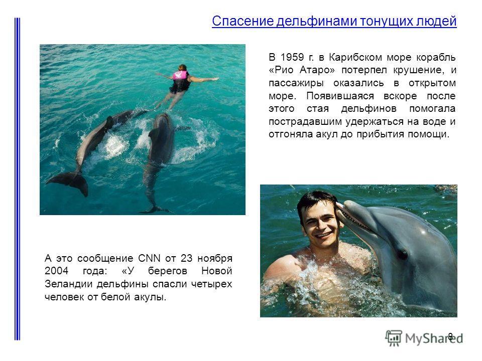 8 Спасение дельфинами тонущих людей А это сообщение CNN от 23 ноября 2004 года: «У берегов Новой Зеландии дельфины спасли четырех человек от белой акулы. В 1959 г. в Карибском море корабль «Рио Атаро» потерпел крушение, и пассажиры оказались в открыт