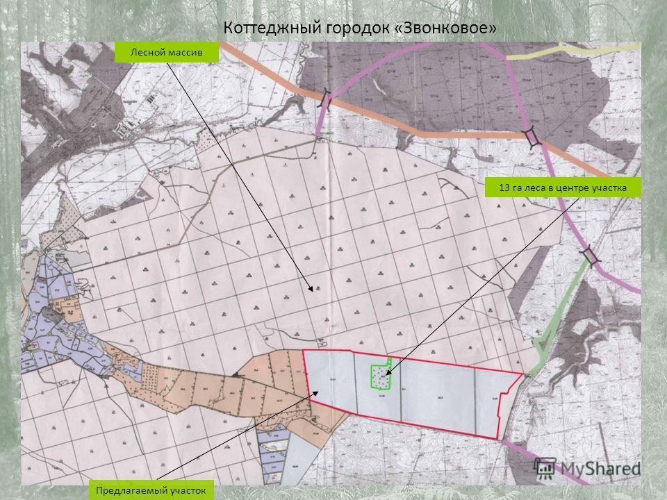 Предлагаемый участок Лесной массив 13 га леса в центре участка Коттеджный городок «Звонковое»