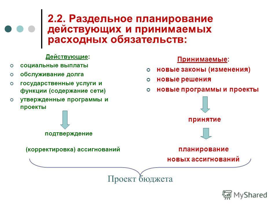 2.2. Раздельное планирование действующих и принимаемых расходных обязательств: Действующие: социальные выплаты обслуживание долга государственные услуги и функции (содержание сети) утвержденные программы и проекты подтверждение (корректировка) ассигн