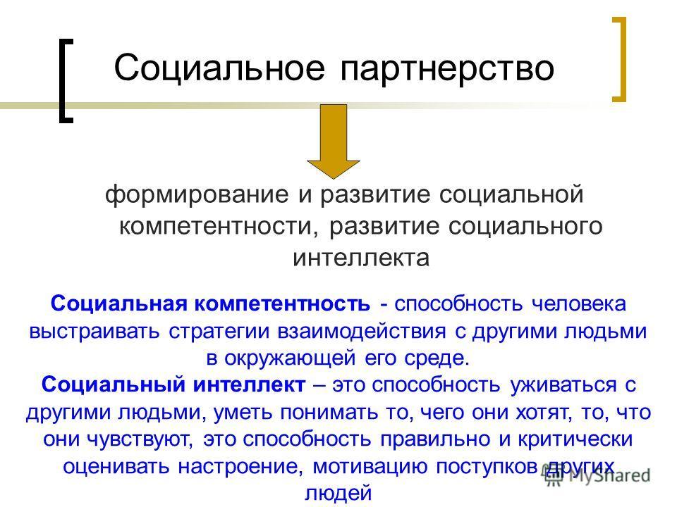 Социальное партнерство формирование и развитие социальной компетентности, развитие социального интеллекта Социальная компетентность - способность человека выстраивать стратегии взаимодействия с другими людьми в окружающей его среде. Социальный интелл