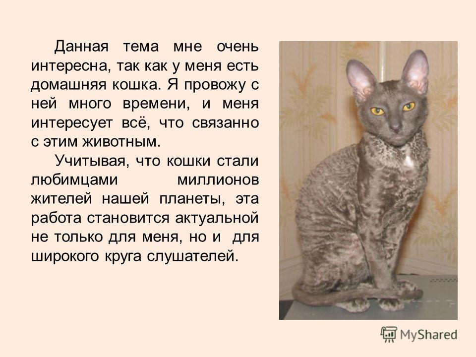 Данная тема мне очень интересна, так как у меня есть домашняя кошка. Я провожу с ней много времени, и меня интересует всё, что связанно с этим животным. Учитывая, что кошки стали любимцами миллионов жителей нашей планеты, эта работа становится актуал