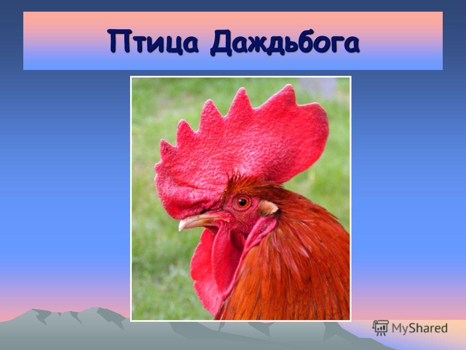 Птица Даждьбога