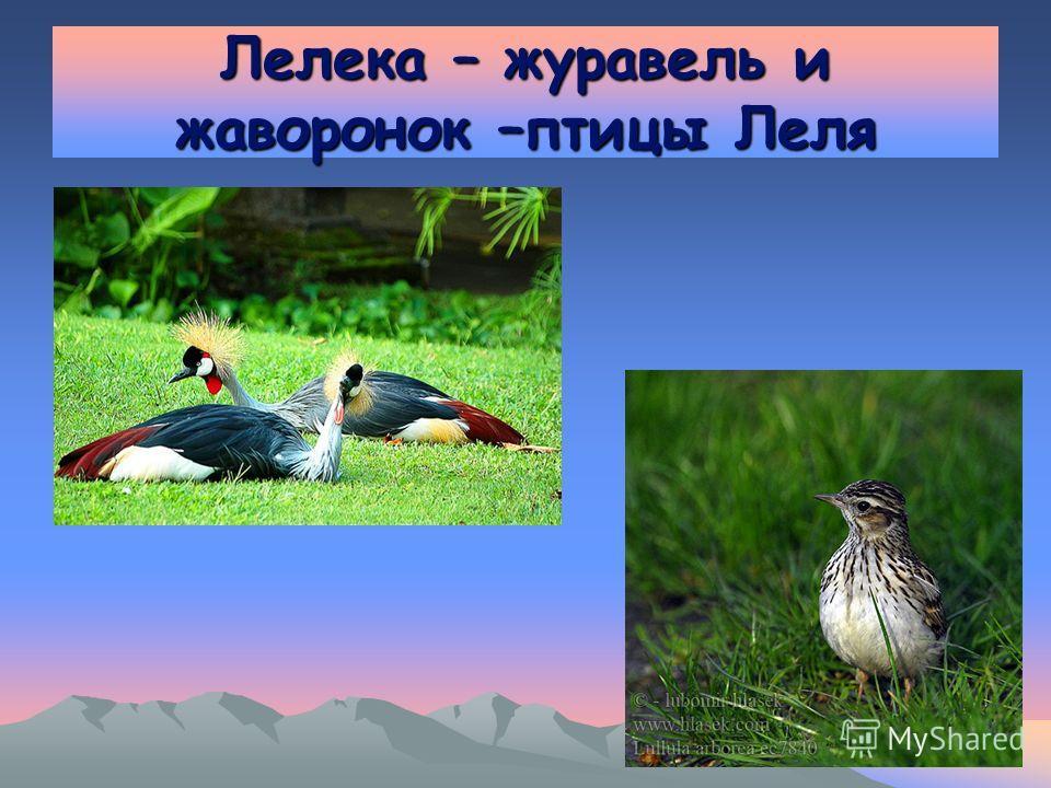Лелека – журавель и жаворонок –птицы Леля