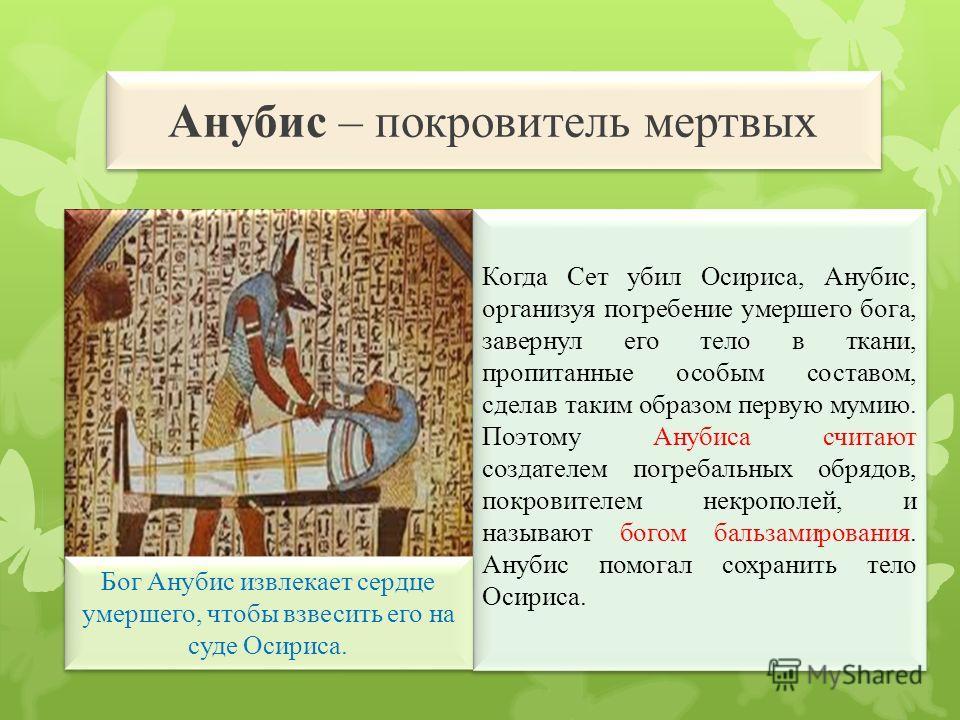 Бог Анубис извлекает сердце умершего, чтобы взвесить его на суде Осириса. Анубис – покровитель мертвых