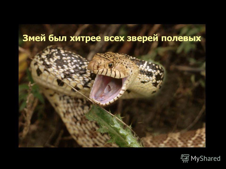Змей был хитрее всех зверей полевых