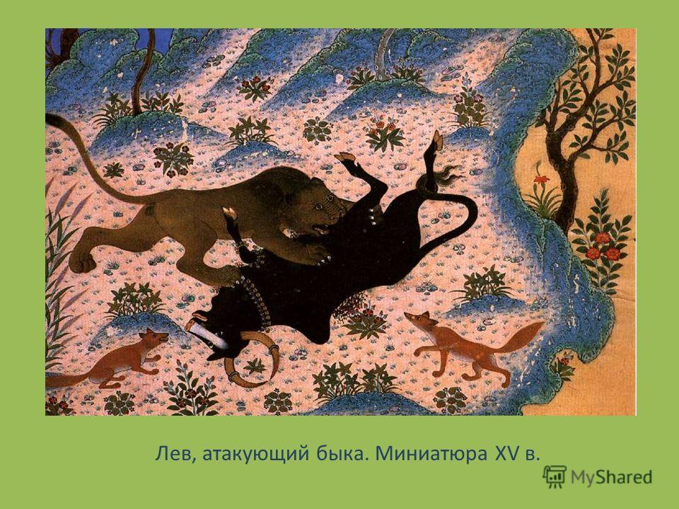 Лев, атакующий быка. Миниатюра XV в.