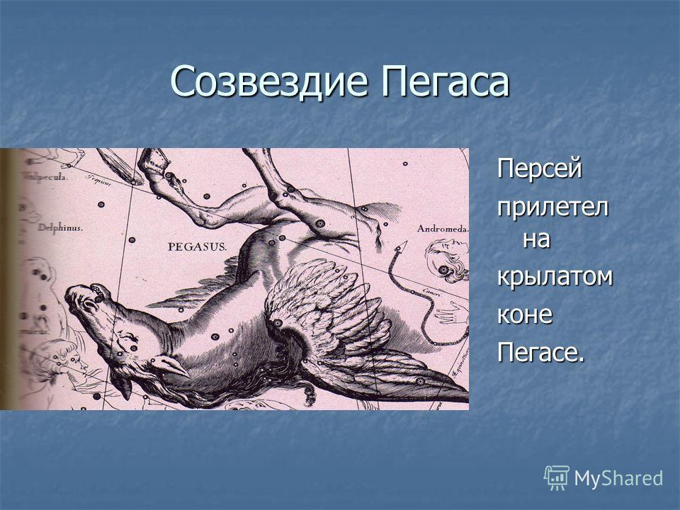 Созвездие Пегаса Персей прилетел на крылатомконеПегасе.