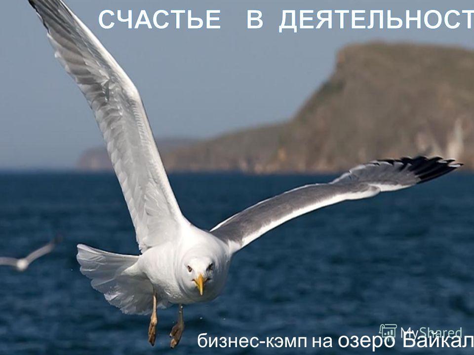 бизнес-кэмп на озеро Байкал