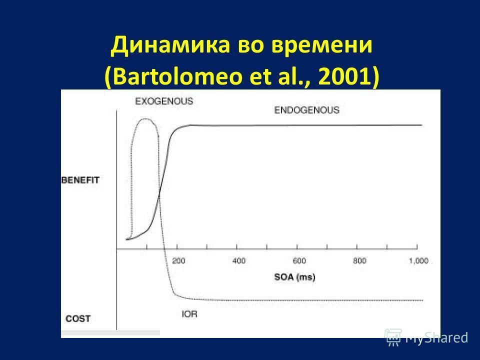 Динамика во времени (Bartolomeo et al., 2001)