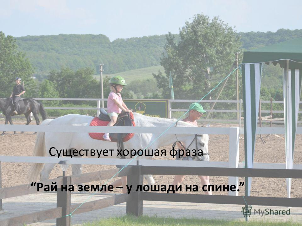 Существует хорошая фраза Рай на земле – у лошади на спине.