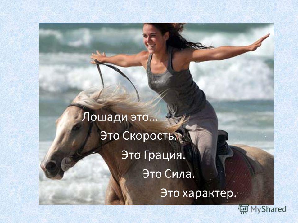 Лошади это… Это Скорость. Это Грация. Это Сила. Это характер.