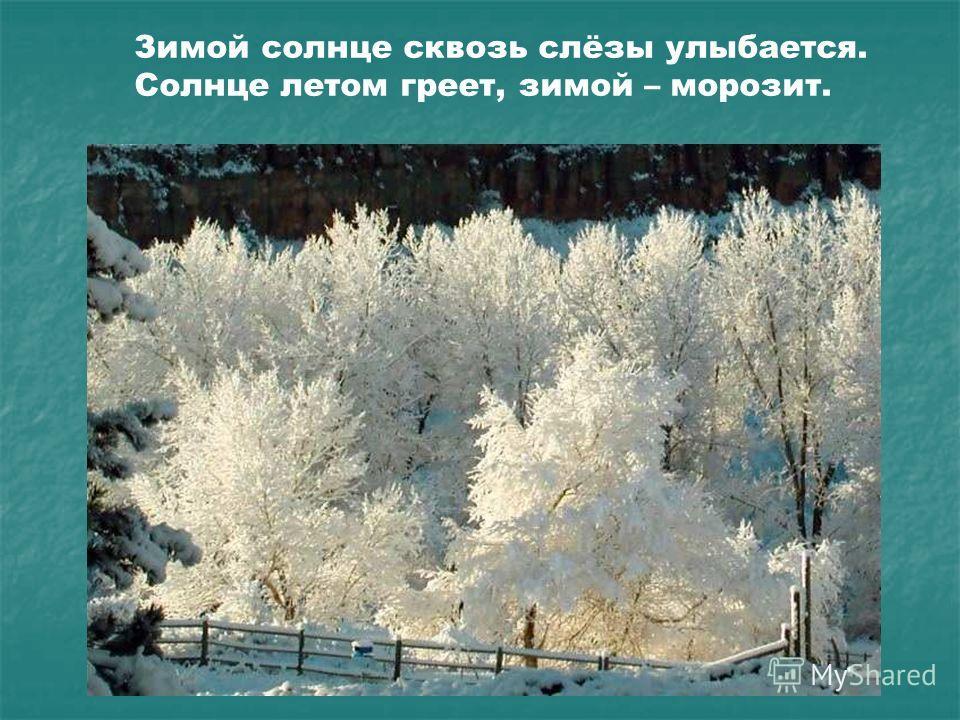 Зимой солнце сквозь слёзы улыбается. Солнце летом греет, зимой – морозит. Зимой солнце сквозь слёзы улыбается. Солнце летом греет, зимой – морозит.