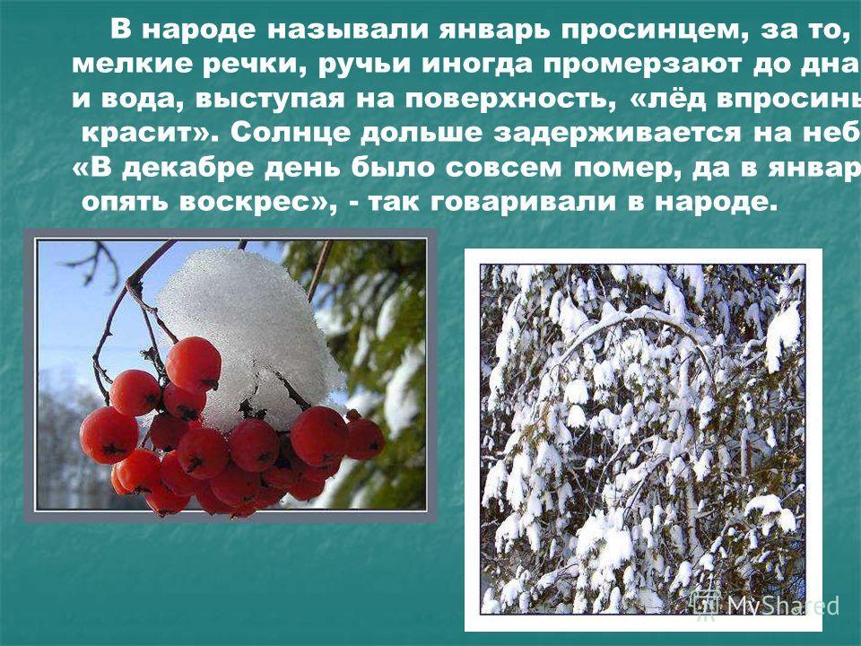 В народе называли январь просинцем, за то, что мелкие речки, ручьи иногда промерзают до дна, и вода, выступая на поверхность, «лёд впросинь красит». Солнце дольше задерживается на небе. «В декабре день было совсем помер, да в январе опять воскрес», -