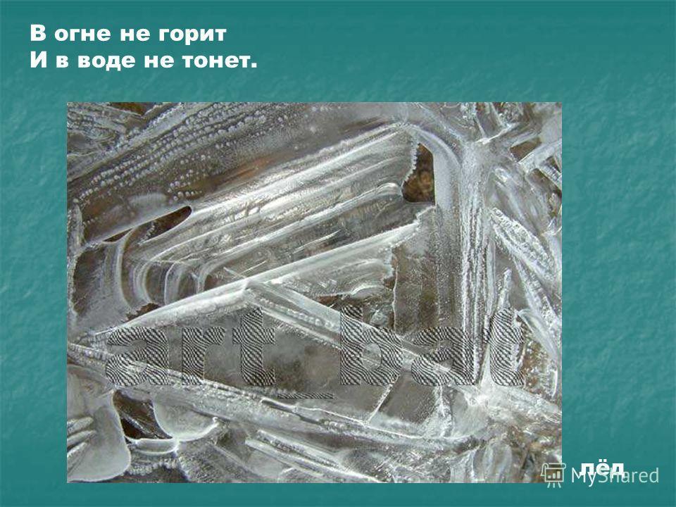 В огне не горит И в воде не тонет. лёд В огне не горит И в воде не тонет. Лёд.
