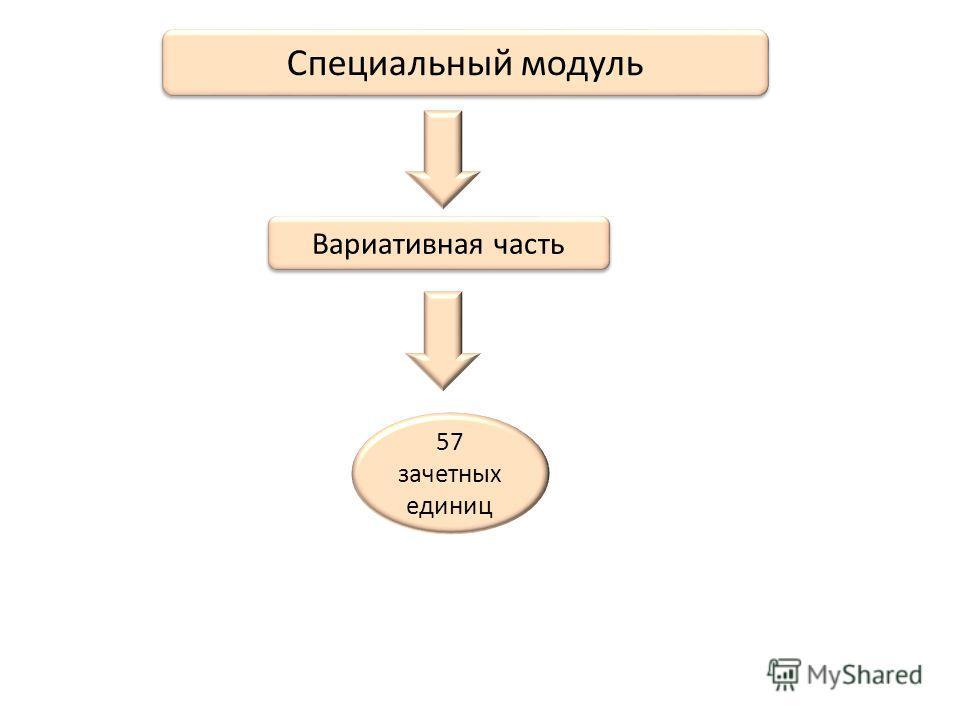 Специальный модуль Вариативная часть 57 зачетных единиц