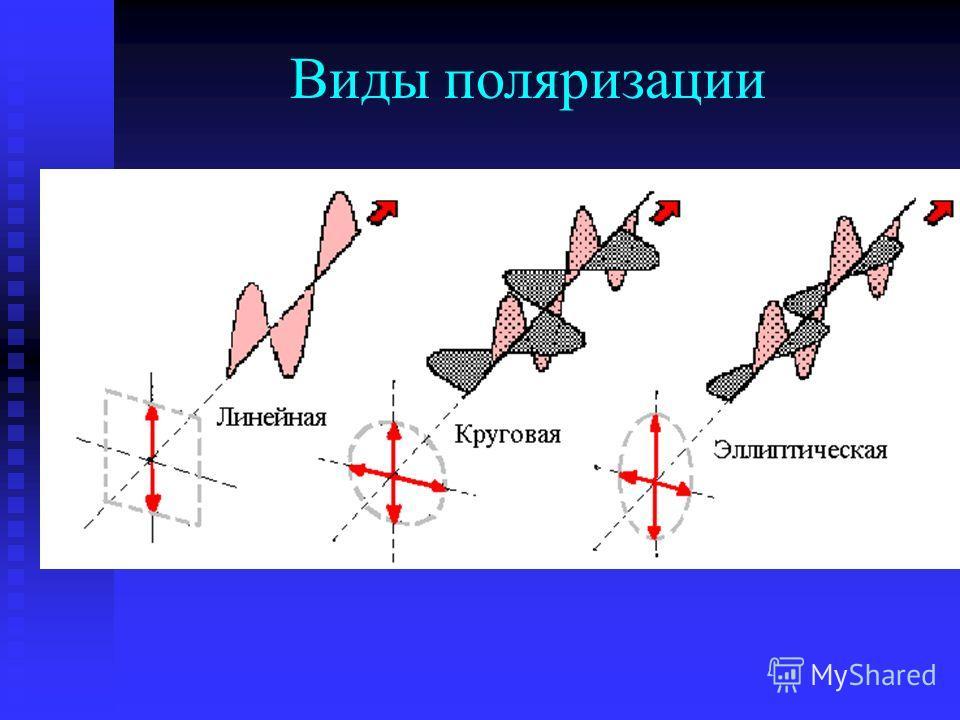Виды поляризации