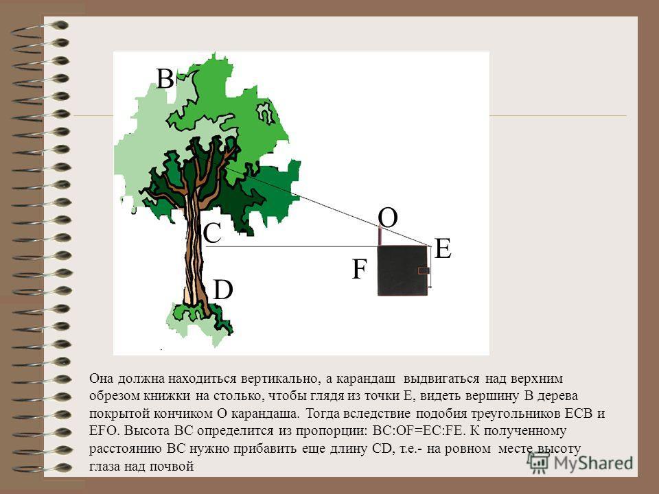 Применить метод подобия, для измерения или определения высоты дома, дерева с помощью записной книжки Можно измерить высоту дерева с помощью записной книжки, если она снабжена карандашом, всунутым в петельку при книжке. Она поможет построить вам в про