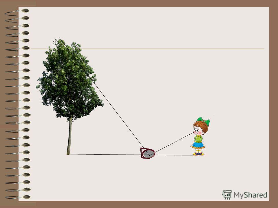4 группа применить метод подобия, для измерения или определения высоты дома, дерева при помощи зеркала Высоту дерева можно определить при помощи зеркала. На некотором расстоянии от измеряемого дерева на ровной земле в точке С кладут горизонтально зер