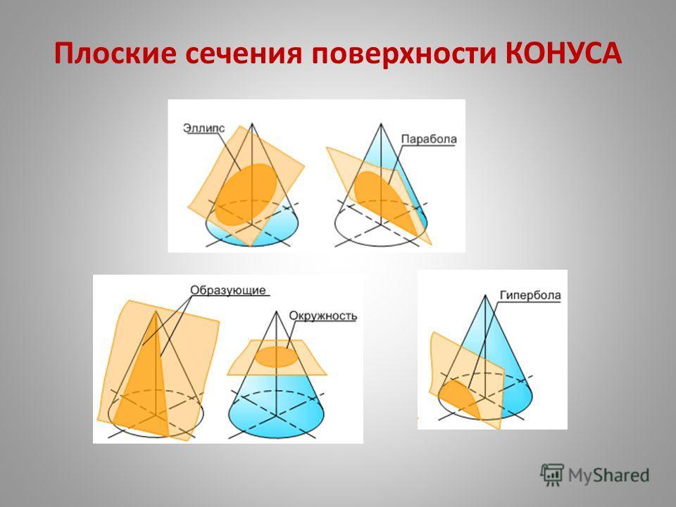 Плоские сечения поверхности КОНУСА