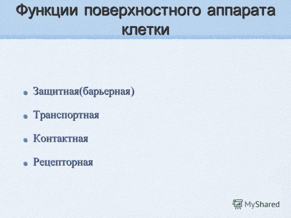 Функции поверхностного аппарата клетки Защитная(барьерная)ТранспортнаяКонтактнаяРецепторная
