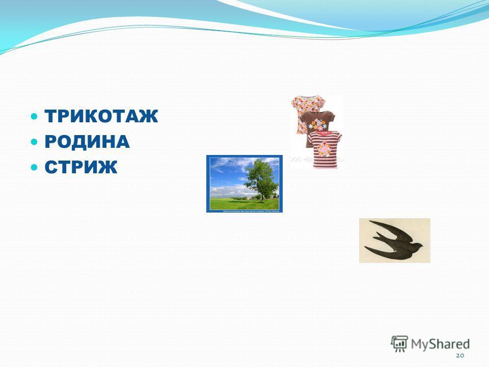 ТРИКОТАЖ РОДИНА СТРИЖ 20