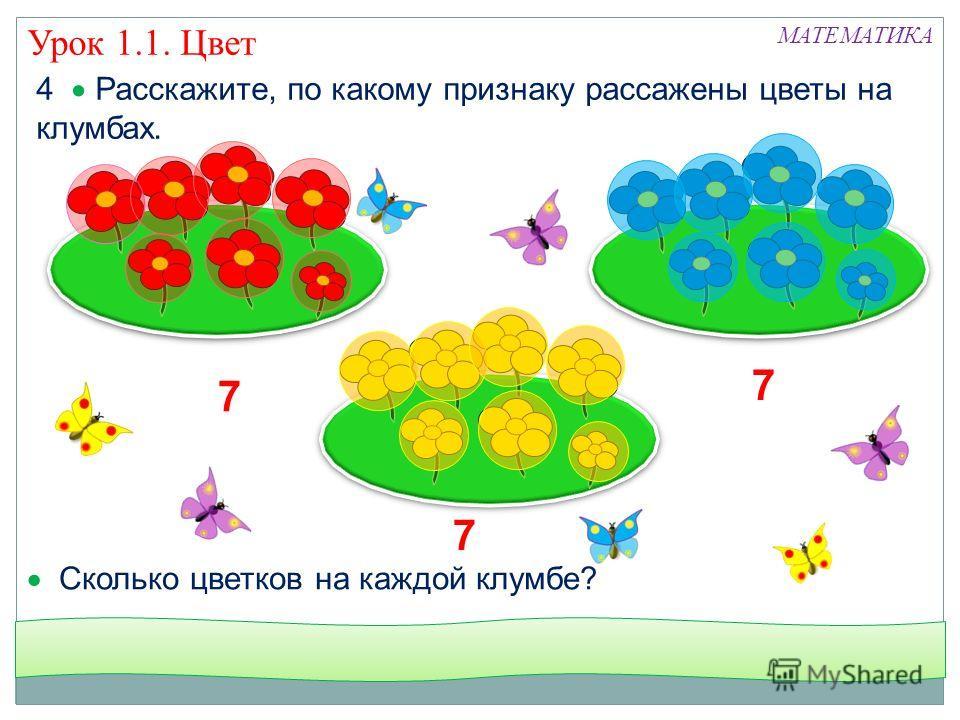 4 Расскажите, по какому признаку рассажены цветы на клумбах. МАТЕМАТИКА Сколько цветков на каждой клумбе? 7 7 7 Урок 1.1. Цвет