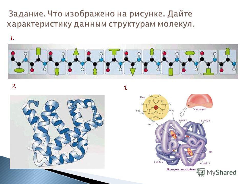 Задание. Что изображено на рисунке. Дайте характеристику данным структурам молекул. 1. 2. 3.