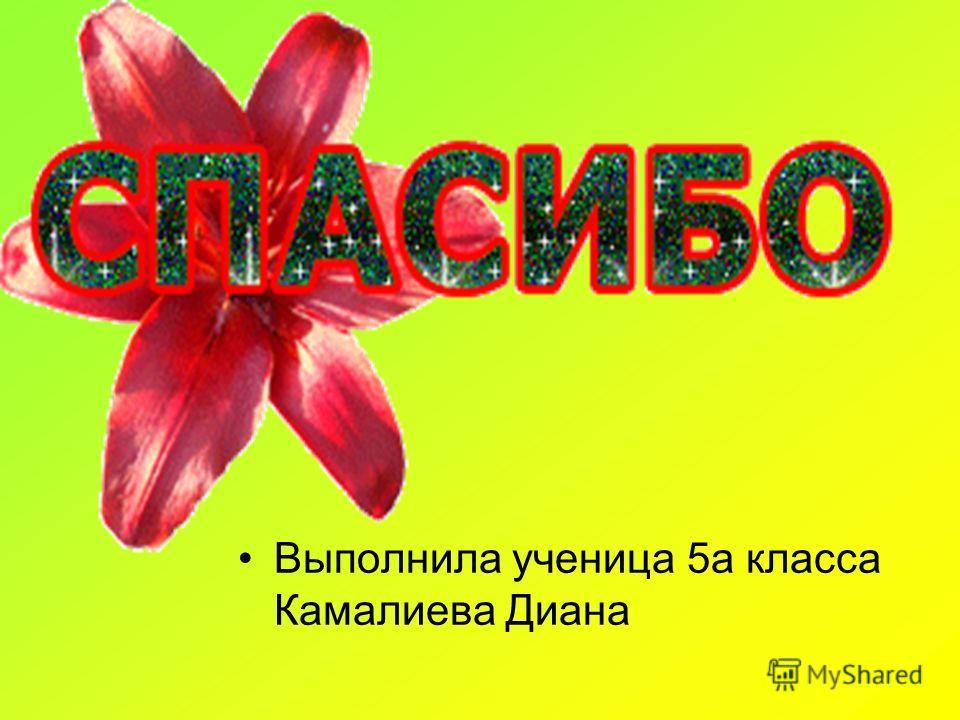 Выполнила ученица 5а класса Камалиева Диана