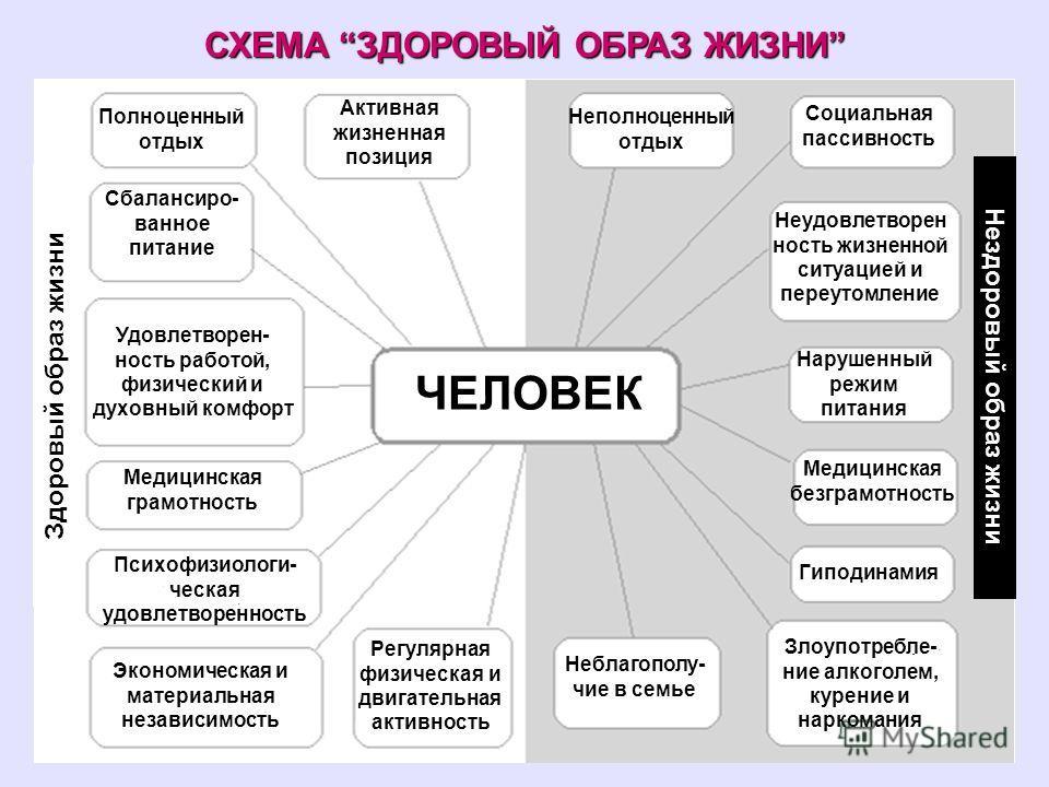 Схема на тему здоровье
