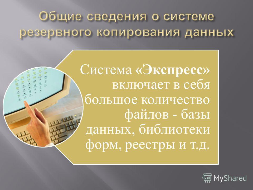Система «Экспресс» включает в себя большое количество файлов - базы данных, библиотеки форм, реестры и т.д.
