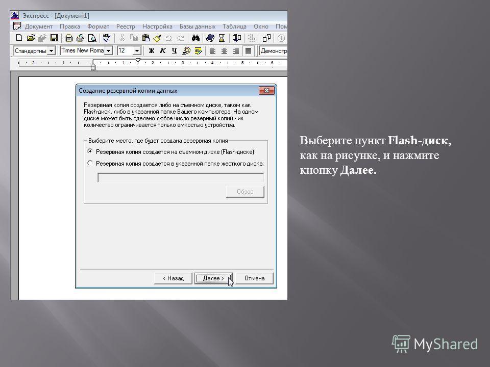 Выберите пункт Flash -диск, как на рисунке, и нажмите кнопку Далее.