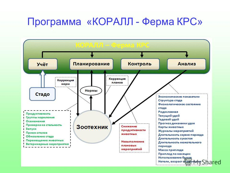 Программа «КОРАЛЛ - Ферма КРС»