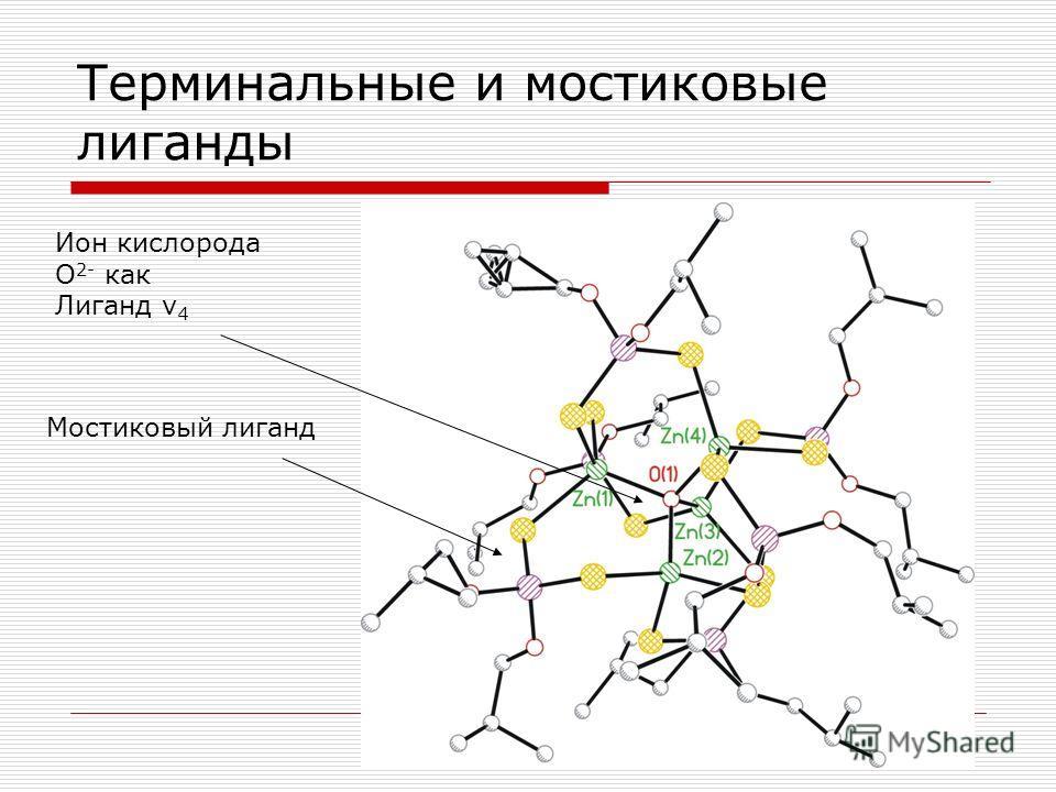 Терминальные и мостиковые лиганды Ион кислорода О 2- как Лиганд ν 4 Мостиковый лиганд