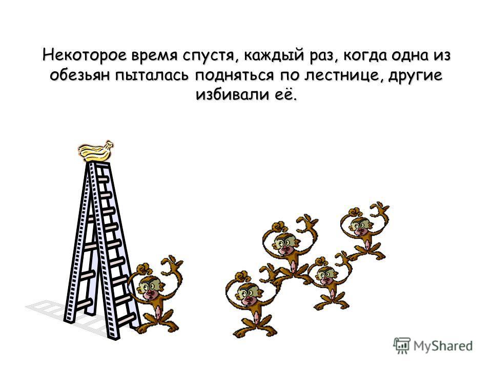 Некоторое время спустя, каждый раз, когда одна из обезьян пыталась подняться по лестнице, другие избивали её.